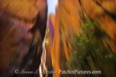 Zion Impressions I by Steve Patchin