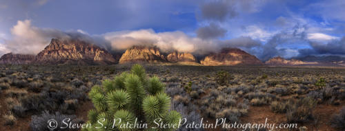 Red Rock Sunrise Clouds and Yucca 2